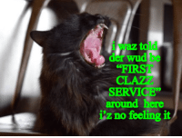 """First, Service, and Feeling: i waz told  der wud be  FIRST  CLAZ  SERVICE""""  around here  iz no feeling it"""