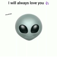 Funny, Love, and Friend: I will always love you  Dont day nun just tag a friend 😂😂😂😂 HoodClips
