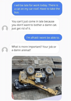 That's a big cat via /r/memes https://ift.tt/2MImSUl: i will be late for work today. There is  a cat on my car roof. Have to take the  bus.  You can't just come in late because  you don't want to bother a damn cat.  just get rid of it.  I'm afraid i wont be able to.  What is more important? Your job or  a damn animal?  CAT That's a big cat via /r/memes https://ift.tt/2MImSUl