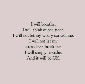 Stress Level: I will breathe.  I will think of solutions.  I will not let my worry control me.  I will not let my  stress level break me.  I will simply breathe.  And it will be OK.