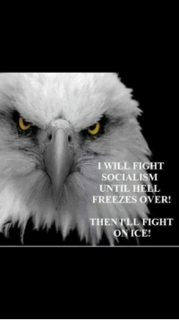I WILL FIGHT  SOCIALISM  UNTIL HELL  FREEZES OVER!  THEN ILL FIGHT  ICE! Hell yeah!