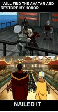 Animals, Memes, and Animal: I WILL FIND THE AVATAR AND  RESTORE MY HONOR  NAILED IT Nailed it!  ~ Anime & Cartoon Universe