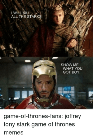 """What an """"interesting"""" crossover it would be: I WILL KILL  ALL THE STARKS!  SHOW ME  WHAT YOU  GOT BOY!  game-of-thrones-fans: joffrey  tony stark game of thrones  memes  A What an """"interesting"""" crossover it would be"""
