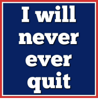 Never Ever: I will  never  ever  quit