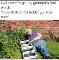 "ladders: I will never forget my grandpa's final  words  ""Stop shaking the ladder you little  cunt""  2"