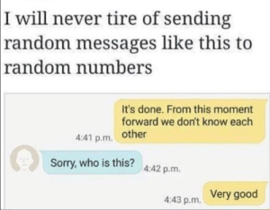 Dank, Memes, and Sorry: I will never tire of sending  random messages like this to  random numbers  It's done. From this moment  forward we don't know each  4:41 p.m. other  Sorry, who is this? 4:42 p.m.  Very good  4:43 p.m. Very good by AndrePeniche MORE MEMES