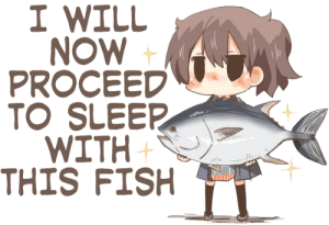 I WILL  NOW  PROCEED  TO SLEER  WITH  THIS FISH