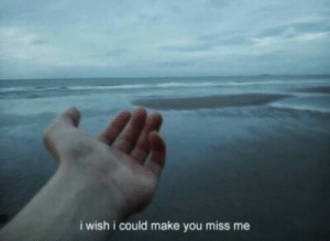 Make, You, and Miss: i wish i could make you miss me