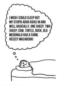 Adhd, Duck, and Turtle: I WISH I COULD SLEEP BUT  MY STUPID ADHD KICKS IN AND  WELL BASICALLY, ONE SHEEP, TWO  SHEEP, COW, TURTLE, DUCK, OLD  MCDONALD HAD A FARM,  HEEEEY MACARENA!
