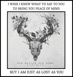 stcktoyourgunsx:Our Hollow, Our Home // Hartsick: I WISH I KNEW WHAT TO SAY TO YOU  TO BRING YOU PEACE OF MIND  O UR H O LL OWO U R H O M E  H ART S IC K  BUT I AM JUST AS LOST AS YOU stcktoyourgunsx:Our Hollow, Our Home // Hartsick