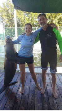 Funny, Happy, and Seal: I wish I was as happy as this seal. https://t.co/27pThoEChw