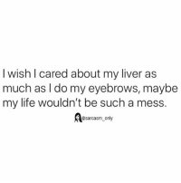 SarcasmOnly: I wish l cared about my liver as  much as l do my eyebrows, maybe  my life wouldn't be such a mess.  @sarcasm_only SarcasmOnly