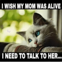 Sad, but wrong meme: I WISH MY MOM WAS ALIVE  I NEED TO TALK TO HER... Sad, but wrong meme