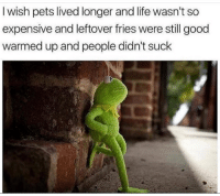 Life, Memes, and Snapchat: I wish pets lived longer and life wasn't so  expensive and leftover fries were still good  warmed up and people didn't suck Snapchat: DankMemesGang