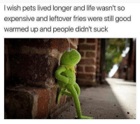 Life, Pets, and Good: I wish pets lived longer and life wasn't so  expensive and leftover fries were still good  warmed up and people didn't suck  ic