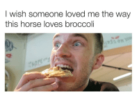 Bear, Horse, and Broccoli: I wish someone loved me the way  this horse loves broccoli
