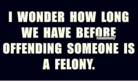 Memes, 🤖, and Felony: I WONDER HOW LONG  WE HAVE BEFORE  OFFENDING SOMEONE IS  A FELONY ???...