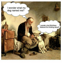 😂😂: I wonder what my  dog named me?  I wonder what Bitchface  Malone Ill is thinking about? 😂😂