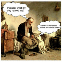 Can you imagine? 🤣: I wonder what my  dog named me?  I wonder what Bitchface  Malone III is thinking about? Can you imagine? 🤣
