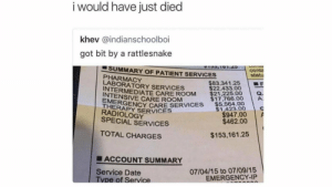 Gotta love summertime: i would have just died  khev @indianschoolboi  got bit by a rattlesnake  SUMMARY OF PATIENT SERVICES425  PHARMACY  conta  statu  $83,341.25 | ■F  $22.433.00  INTERMEDIATE CARE ROOM21.75 00  $17,766.00  THERNCY CARE SERVICES 5.564.00  INTENSIVE CARE ROOM  EMERGE  A.  $1,423.00  RADIOLOGY  SPECIAL SERVICES  $947.00  $462.00  TOTAL CHARGES  $153,161.25  ■ ACCOUNT SUMMARY  07/04/15 to 07/09/15  EMERGENCY-IP  Service Date  e of Service Gotta love summertime