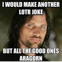 (y) Fantasy and Sci-Fi Rock My World: I WOULD MAKE ANOTHER  LOTR JOKE  BUT ALL THE GOOD ONES  ARAGORN (y) Fantasy and Sci-Fi Rock My World