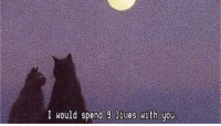 Irl, Cat IRL, and Cat: I would spend 9 lives with you Cat irl