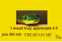 Appreciate, Thx, and Did: I would truly appreciate it if  you did not TREAD ON ME  Thx <p>DONT TREAD ON ME</p>