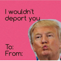 I wouldn't  deport you  From: This would make a great valentine's day card