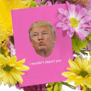 Memes, Link, and 🤖: i wouldn't deport you Order these cards at the link in my bio. Domestic orders delivered by Valentine's Day if ordered before Tuesday 2-5
