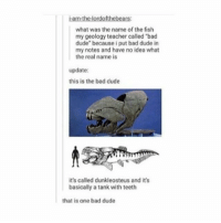 """Bad, Dude, and Memes: iam the lordofthebeats  what was the name of the fish  my geology teacher called """"bad  dude"""" because i put bad dude in  my notes and have no idea what  the real name is  update:  this is the bad dude  it's called dunkleosteus and it's  basically a tank with teeth  that is one bad dude I've posted the Bad Dude before but seriously I want one as a pet - Max textpost textposts"""