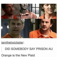 Did Somebody Say: iamthetwickster:  DID SOMEBODY SAY PRISON AU  Orange is the New Plaid