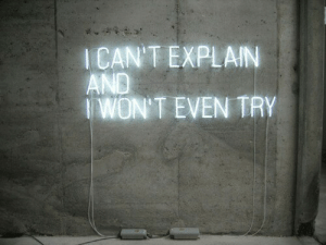 Icant: ICAN'T EXPLAIN  AND  WON'T EVEN TRY