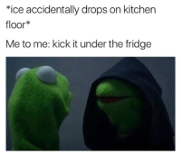 Dank, Time, and 🤖: *ice accidentally drops on kitchen  floor*  Me to me: kick it under the fridge Every time 😂