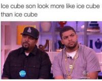 Look More Like: Ice cube son look more like ice cube  than ice cube
