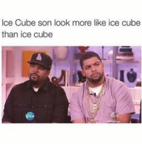 Ice Cube: Ice Cube son look more like ice cube  than ice cube