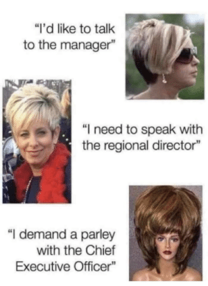 "Who's in charge here by EverythingTittysBoii MORE MEMES: ""i'd like to talk  to the manager""  ""I need to speak with  the regional director""  ""I demand a parley  with the Chief  Executive Officer Who's in charge here by EverythingTittysBoii MORE MEMES"