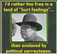 "I AGREE!: I'd rather live free in a  land of ""hurt feelings""  than enslaved by  political correctness. I AGREE!"