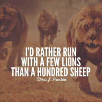 Friends, Journey, and Life: I'D RATHER RUN  WITH A FEW LIONS  THAN A HUNDRED SHEEP  Chris Preston Follow my personal page @chrisjpreston and follow my journey. - When I was younger I wanted to have thousands of friends. Now I'd rather have a few close friends. As I've grown I've realized that have a few deep relationships is way more rewarding that many surface level ones. Who you hang out with the most will have the biggest impact on your life. Choose wisely.