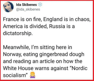 """I saw this earlier today, and I was like ... Oh, hell yeah!: Ida Skibene  @ida_skibenes  France is on fire, England is in chaos,  America is divided, Russia is a  dictatorship.  Meanwhile, I'm sitting here in  Norway, eating gingerbread dough  and reading an article on how the  White House warns against """"Nordic  socialism"""" I saw this earlier today, and I was like ... Oh, hell yeah!"""