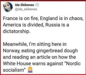 """Basically: Ida Skibenes  @ida_skibenes  France is on fire, England is in chaos,  America is divided, Russia is a  dictatorship.  Meanwhile, I'm sitting here in  Norway, eating gingerbread dough  and reading an article on how the  White House warns against """"Nordic  socialism"""" Basically"""
