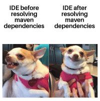 WHAT IS THIS FILTH ? ohh okay cool: IDE before  IDE after  resolving  maven  resolving  maven  dependencies dependencies  LILY LU WHAT IS THIS FILTH ? ohh okay cool