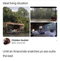 💀😂: Ideal living situation  Chidden Nuddet  @Sir Hurizzel  Until an Anaconda snatches yo ass outta  the bed 💀😂
