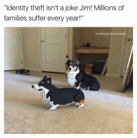 """Funny, Suffering, and Identity Theft: """"Identity theft isn't a joke Jim! Millions of  families suffer every year!""""  scooby doofruitsnacks insta or twitter"""