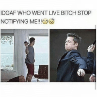Memes, Idgaf, and 🤖: IDGAF WHO WENT LIVE BITCH STOP  NOTIFYING ME!!! For Fucking Real...I Didn't Update My Shit So Miss Me With So & So Going Live The Amount Of Fucks I Don't Give Is So Immense. 😑😑😂😂😂💯 pettypost pettyastheycome straightclownin hegotjokes jokesfordays itsjustjokespeople itsfunnytome funnyisfunny randomhumor