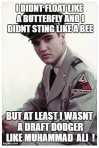 Oh Grandma ... Mohammed Ali was NOT a coward and Elvis isn't somehow better than him.: IDIONTFLOAT LIKE  ABUTTERFLY ANDI  DIDNTSTING LIKE ABEE  BUT AT LEASTIWASNT  A DRAFT DODGER  LIKE MUHAMMAD ALI! Oh Grandma ... Mohammed Ali was NOT a coward and Elvis isn't somehow better than him.