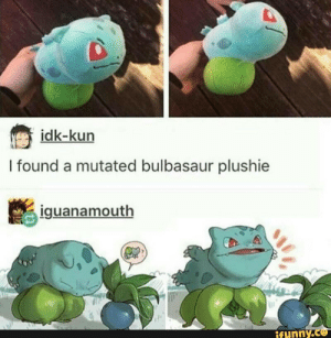 ……..: idk-kun  I found a mutated bulbasaur plushie  iguanamouth  ifynny.co ……..