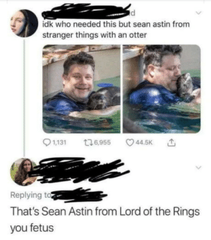 Ummm that's Sean Astin from Goonies you uncultured swine.: idk who needed this but sean astin from  stranger things with an otter  1,131  t16,955  44.5K  Replying to  That's Sean Astin from Lord of the Rings  you fetus Ummm that's Sean Astin from Goonies you uncultured swine.