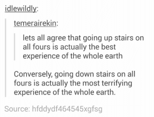 different experiencesomg-humor.tumblr.com: idlewildly:  temerairekin:  lets all agree that going up stairs on  all fours is actually the best  experience of the whole earth  Conversely, going down stairs on all  fours is actually the most terrifying  experience of the whole earth.  Source: hfddydf464545xgfsg different experiencesomg-humor.tumblr.com