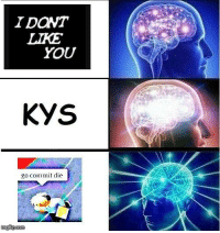 You, Like, and Kys: IDONT  LIKE  YOU  KYS  go commit die