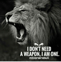 One, Weapon, and  Need: IDON'T NEED  A WEAPON, I AM ONE.  millionairebull Be a Weapon